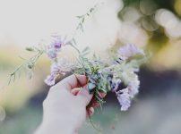一言で花といっても、バラ、コスモス、チューリップ、デイジー、朝顔、桜などがあり、これらはまったく形が違うのに私たちはこれらを無条件で花と判断する。