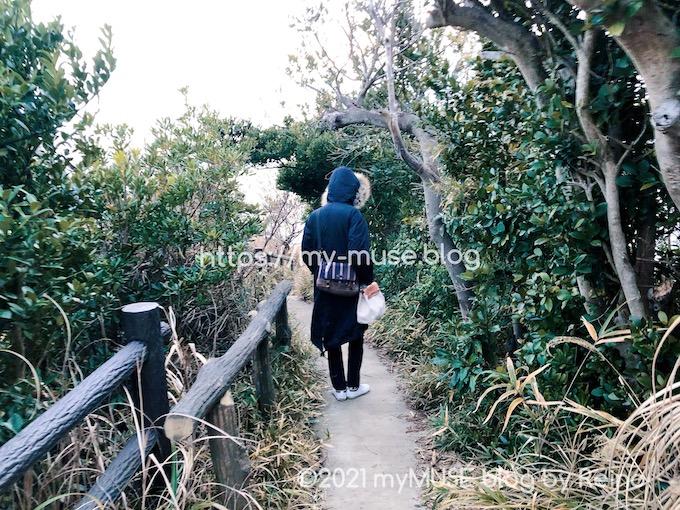 城ヶ島「馬の背洞門」へ続く道