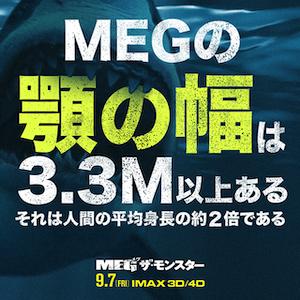 """出典:<a href=""""https://warnerbros.co.jp/movie/megthemonster/meg.html"""" target=""""_blank"""">MEG〈メガロドン〉とは? 映画『MEG ザ・モンスター』公式サイト</a>"""