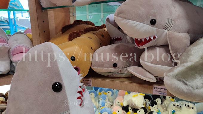 京急油壺マリンパークのお土産やさんのサメのぬいぐるみ(おかえりモネ)