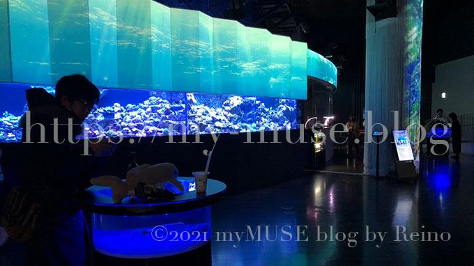 水族館マクセルアクアパーク品川のコーラルカフェバー