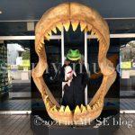 京急油壺マリンパークにあるメガロドン(ムカシオオホホジロザメ)の歯型