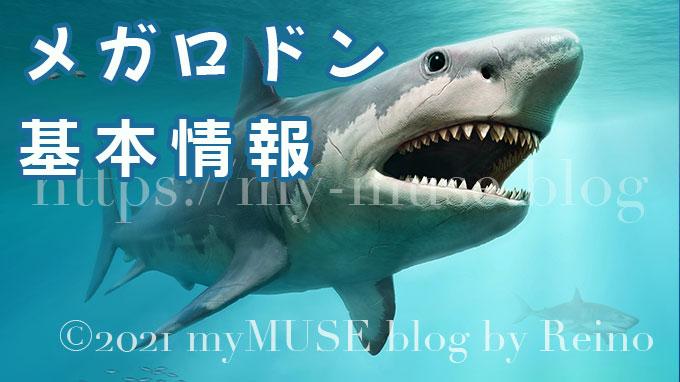 巨大サメ・メガロドン(ムカシオオホホジロザメ)は現在も実在する?大きさや化石についても解説