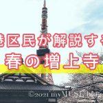 港区民が解説する春の増上寺