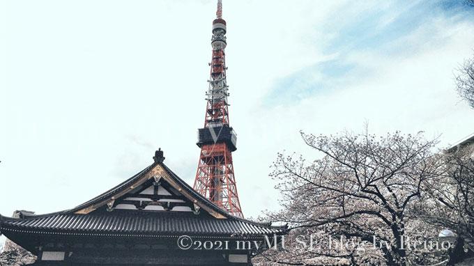 2018年3月24日に撮影した増上寺の桜