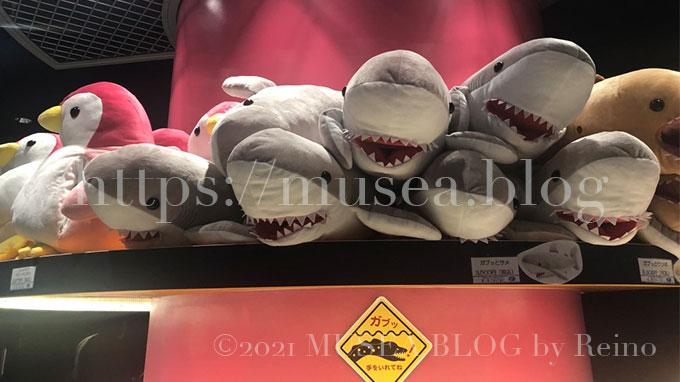 かわいいサメのぬいぐるみ