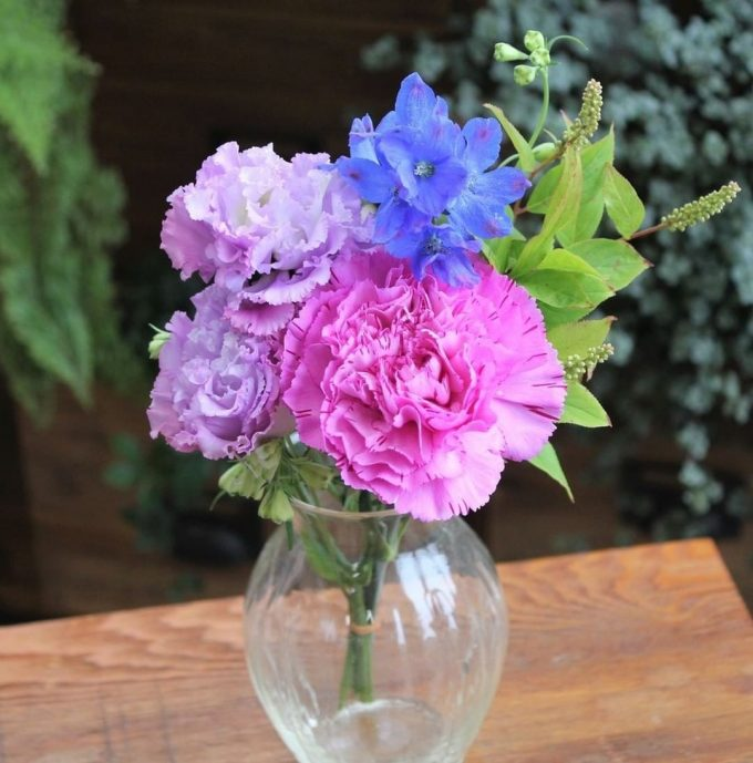【インスタで話題!】ポストに届くお花の定期便bloomee【インスタで話題!】ポストに届くお花の定期便bloomee