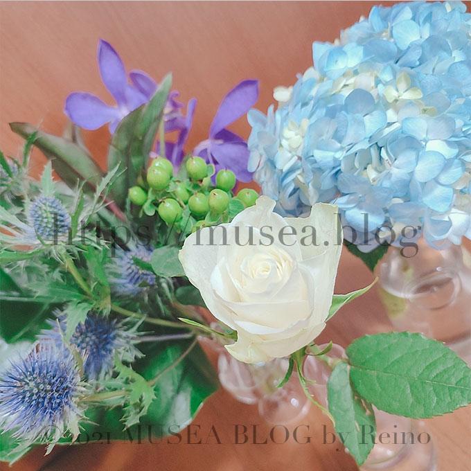 お花のサブスクでおしゃれな色を選びたいならHitoHana(ひとはな)