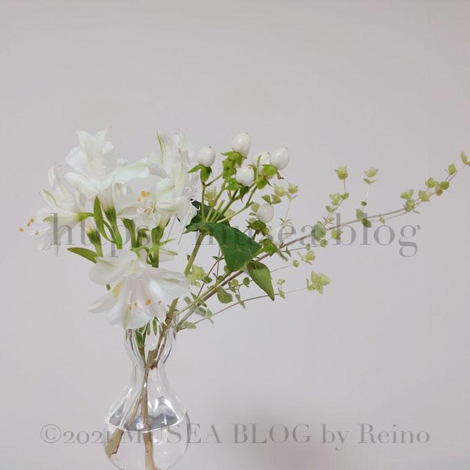 花のサブスク比較!お花の定期便で500円から花のある暮らしを始めよう