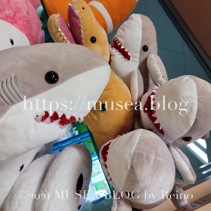 おかえりモネのサメのぬいぐるみ
