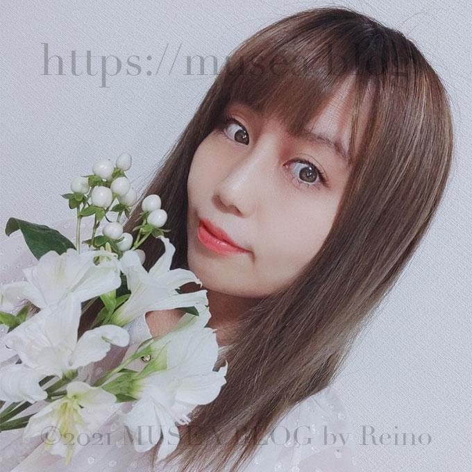 Reinoブログ-サメ・お花のサブスク