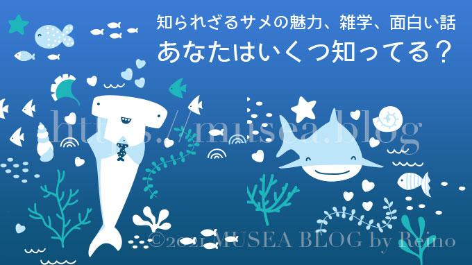 知られざるサメの魅力、雑学、面白い話!あなたはいくつ知ってる?