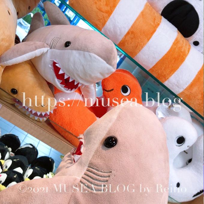 おかえりモネのサメのぬいぐるみを買える場所