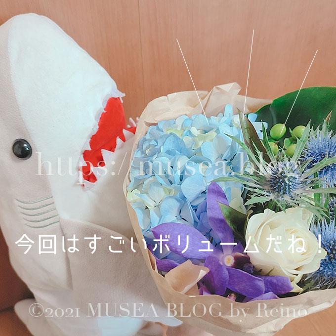 HitoHana(ひとはな)のお花のサイズ感