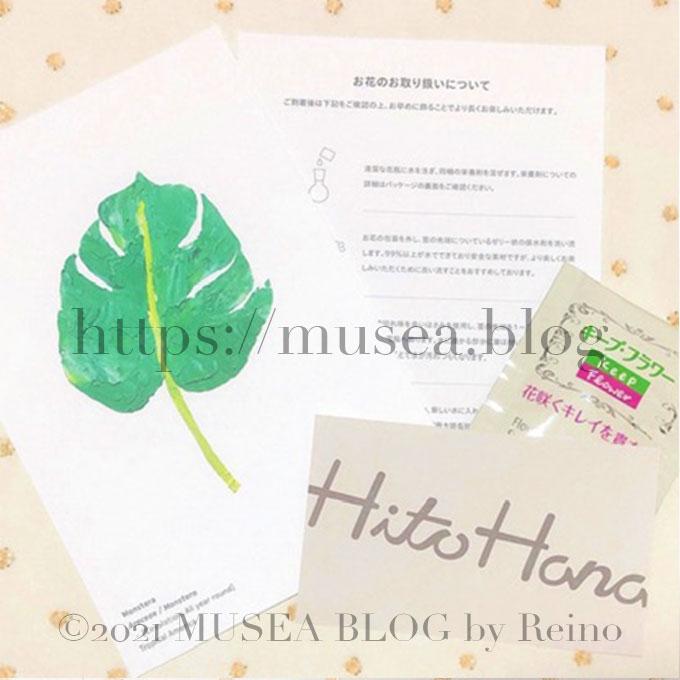 お花の紹介(一種類のみ)、お花の栄養剤、お花の取り扱いの説明書、HitoHana(ひとはな)のショップカード。