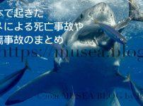 魚を食べるホホジロザメ。2021年までに日本で起きたサメによる死亡事故や負傷事故のまとめ